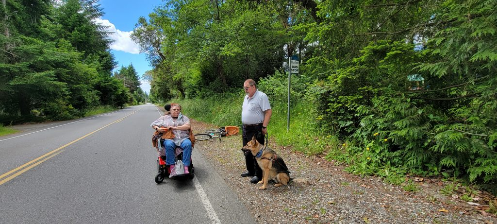 Two light skinned people, one in a wheelchair and one with a service animal, wait at a bus stop on a rural road. There are no sidewalks, and so the person in the wheelchair is waiting in the travel lane of the road.